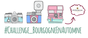 2016-10-concours-instagram-welovebourgne-patriarche-challenge_bourgogneenautomne-article
